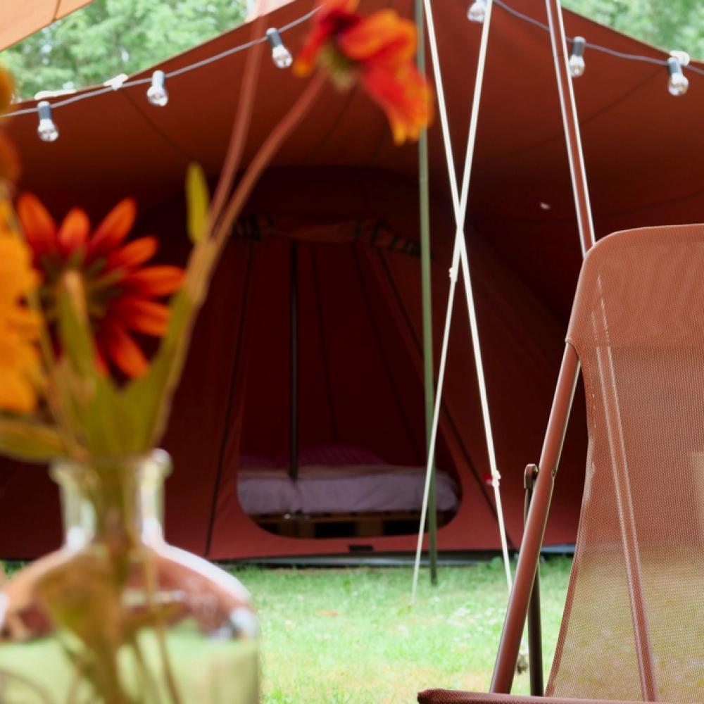 homebnscrispdomainsbnscrisp.nlpublic_htmlwp-contentuploads202103E582AB03-3394-410C-B3A4-3789192F633D.jpeg