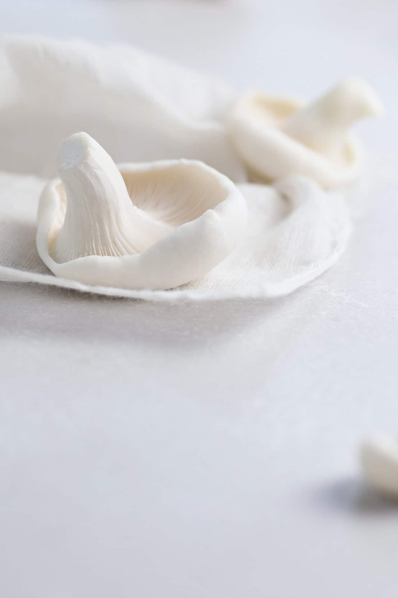 Mushroom trend | BNS Crisp